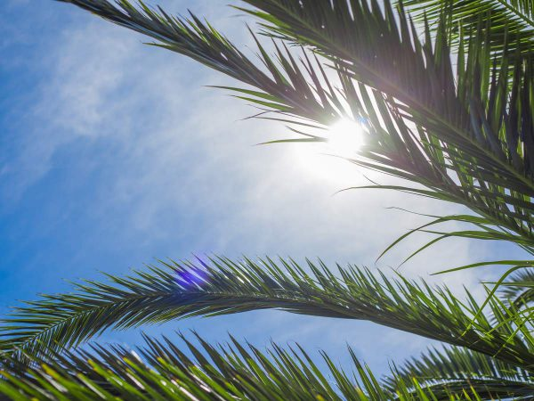 Does double glazing reduce the heat in Brisbane's summer?