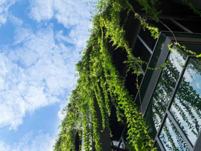 The fundamental principles of sustainable building construction